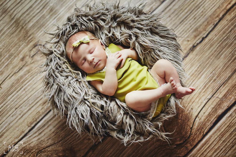 kokarda, koronkowe body, noworodek