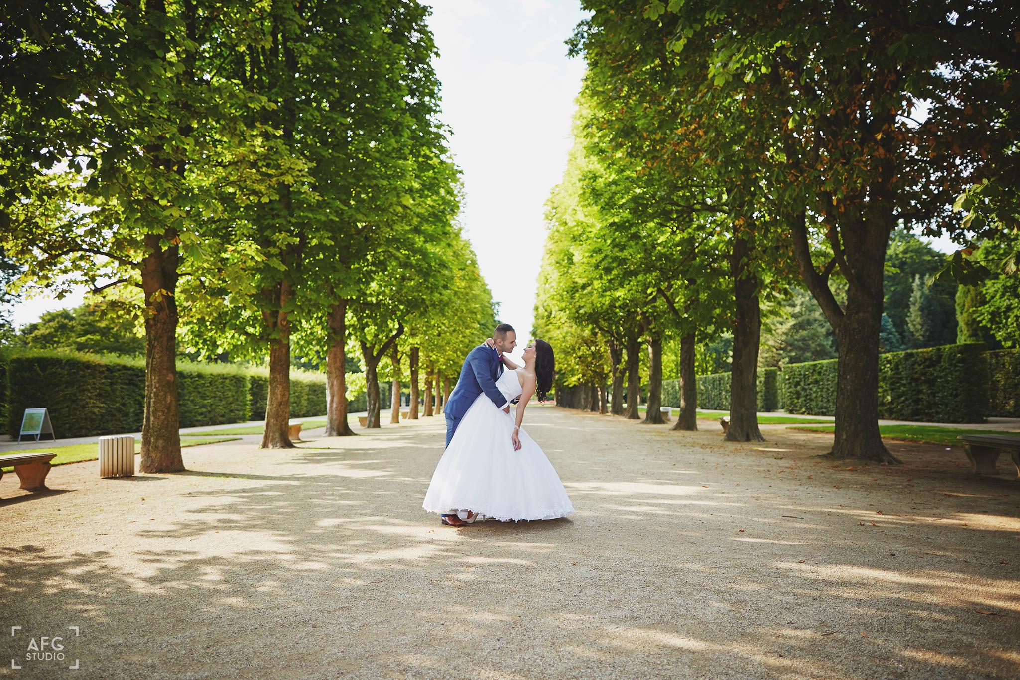 park, taniec, drzewa