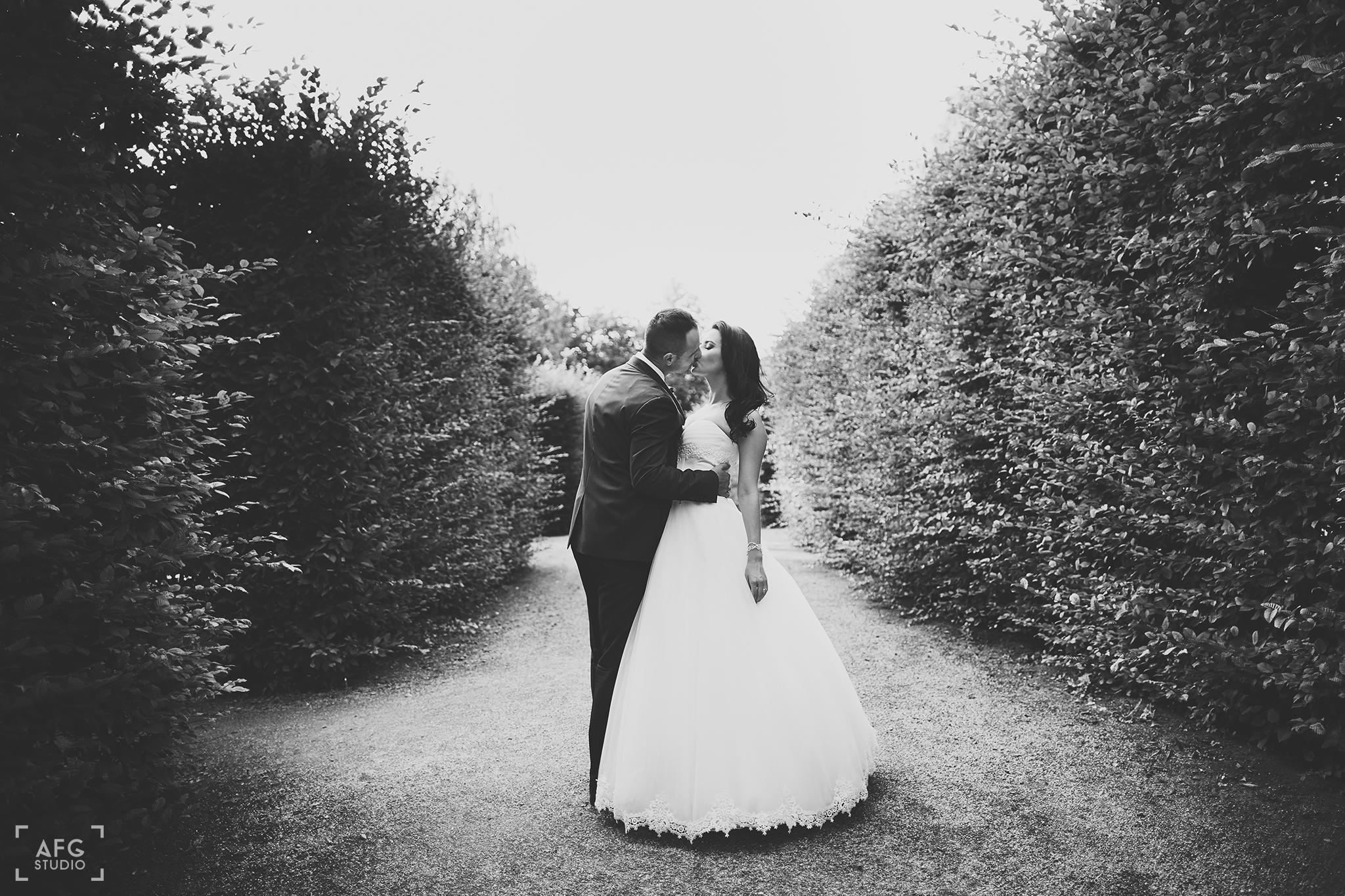 ogród, nowożeńcy, pocałunek