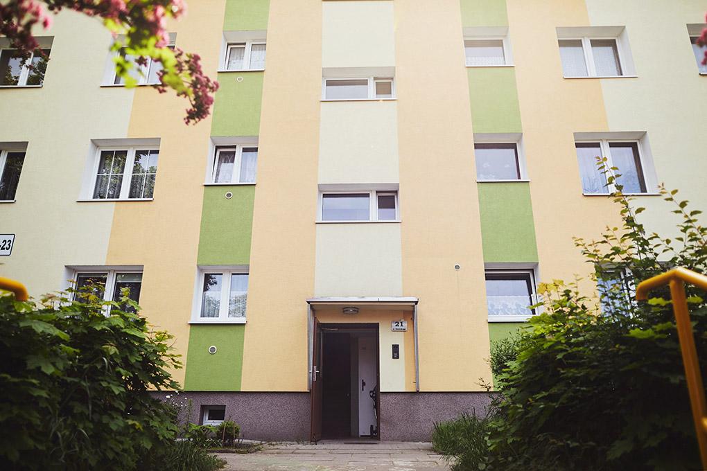 budynek, liście